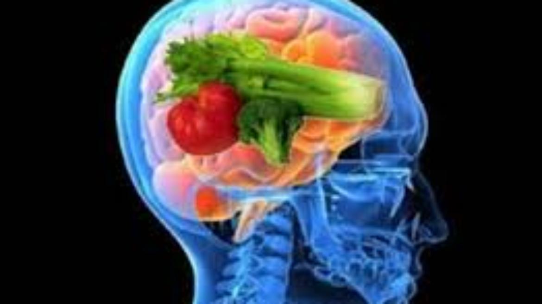 ¿QUE ES REALMENTE UNA DIETA?
